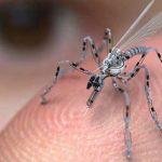 La Fuerza Aérea de EE.UU trabaja en el desarrollo de Drones Insectos